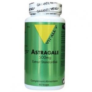 Astragale 500 mg 60 capsules vitall