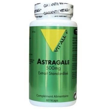 Astragale 500 mg 60 capsules vitall