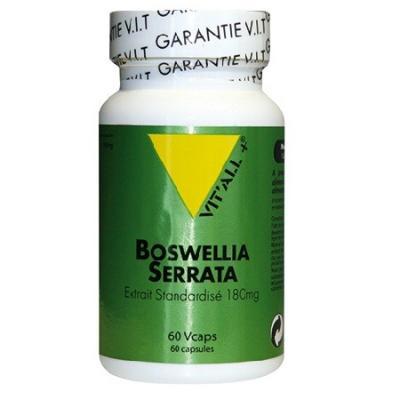 Boswellia serrata standardise 60 gelules vitall 4155 1
