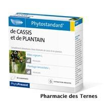 Cassis plantain