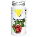 Cranberry extrait standardise 400 mg 60 comprimes vitall 3679 1