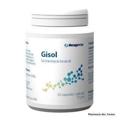 Gisol 1